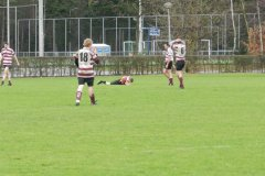 Vets - PSV 18-12-2011